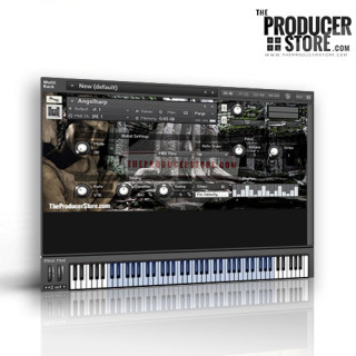 TheProducerStore.com - Angel's Harp Kontakt Player